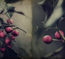 Holly Berries by Nicola Smith