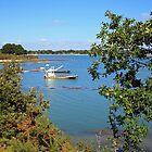 Golfe du Morbihan, Brittany, France by Liz Garnett