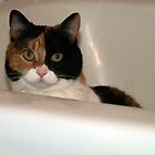 Fiona In The Tub by BarbL