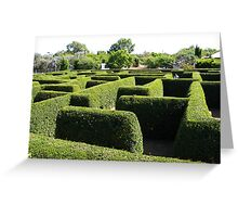 Maze Maddness Greeting Card