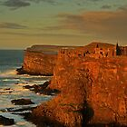 Dunluce Castle, North Coast of N.Ireland.  by Fred Taylor