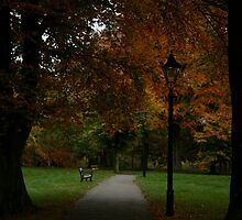 Benches & Lamposts Amongst Autumn Trees  by Iani