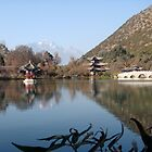 Chinese Buildings on the Lake by Ashleigh Johnson