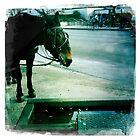 Jackson Square Mule by Cheryl Vorhis