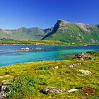 The Magic of Colors  -  Lofoten Islands . Norway . by Brown Sugar . Favorites: 2 Views: 507 . Thank you !!!!   dziękuję !!! by © Andrzej Goszcz,M.D. Ph.D
