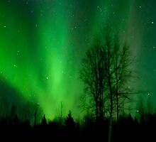 The Northern Lights by peaceofthenorth