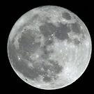 Amsterdam,Holland Supermoon 500mm by DutchLumix