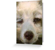 I Dub You... Boring Greeting Card