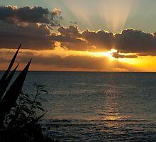 Tropical sunset,Mauritius  by rajeshbac