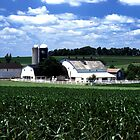 Pa. Amish Farm by ©  Paul W. Faust