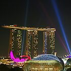 Light Delight - Singapore by Leanne Allen