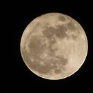 Supermoon 0373 by Connie Bunke