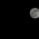 Supermoon - March 20, 2011 by Hassan Khan