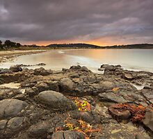 Primrose Beach Sunrise #4 by Chris Cobern