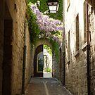 Saint-Rémy-de-Provence by Susan Moss