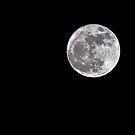 Moon by JEZ22