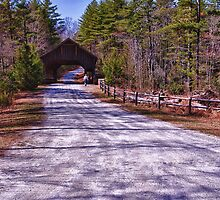 A Walk in the Country by Kathy Weaver