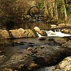 River Erme by moor2sea