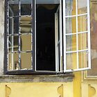 Yellow Window Buda 2 by Danielle  La Valle
