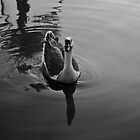 Goose by MuhammadAther