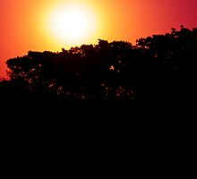 Silhoutte Sunset 2 by MuhammadAther