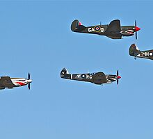 Stunning WWII War Birds. by LJ_©BlaKbird Photography