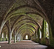 Fountains Abbey cellarium by AttiPhotography