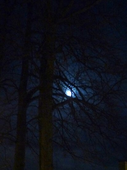 Mystic Moon by HELUA