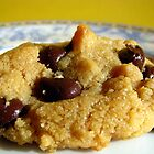 Fresh chocolate chip cookie by Tracy Friesen