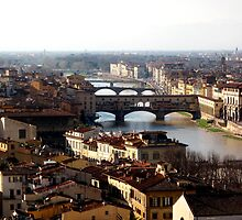 The View - Florence, Italy by Britland Tracy