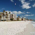 Naples Beach by DorothyB