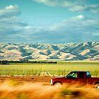 Somewhere: Central California by alyssafadera