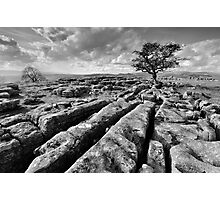 The Yorkshire Dales - Limestone Country Photographic Print