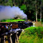 Puffing Billy by Chuckys72