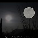 "Super ""Desert"" Moon in Southern Arizona by Kimberly P-Chadwick"