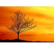 Red sky Photographic Print