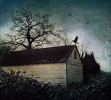 The Old Summer House by Citizen