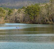 Oak Mountain Lake by Jacqueline Ison