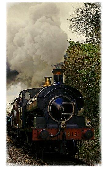Steam train, East Somerset Railway, UK by buttonpresser