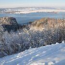 Lake and Mountain at Winter by Daidalos