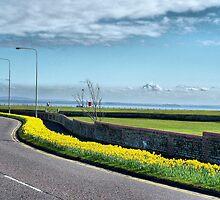 Coastal Road. by Lilian Marshall