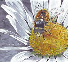 """Bee"" in Nature by Maree Clarkson"
