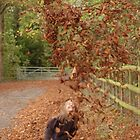 Autumn fun by unclebuck