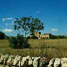 Spanish landscape by contradirony