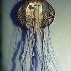 Medusa by Virag Anna Margittai