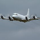RAAF Lockheed AP-3C Orion  by Cecily McCarthy