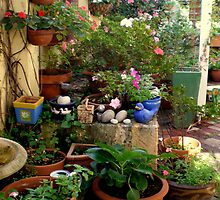 My Cottage Garden by joycee