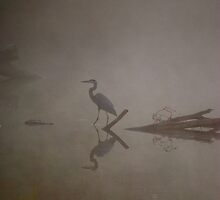 heron in the mist by Mark de Jong