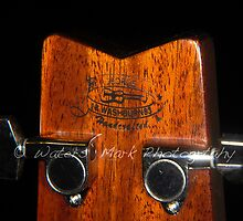 Washburn Headstock Close-up by James P. Waters
