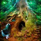 Down the Rabbit Hole by Aimee Stewart